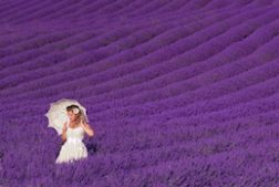 provence-france-laurie-cohen-photography-workshops
